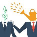 mentor protege relationship career job