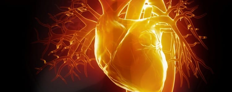 Attacking Anterior Wall Myocardial Infarction In Time