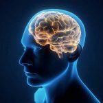 geonomics brain illness