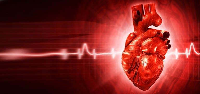 BNP: Rapid detector of heart failure
