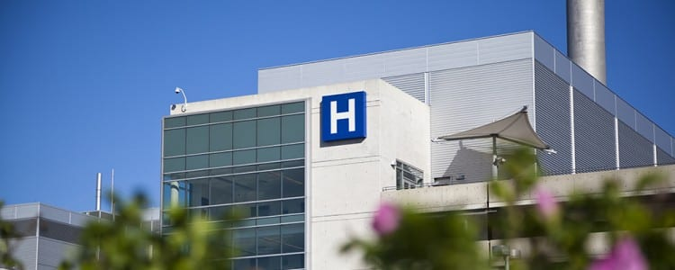 Spotlight on nurse staffing, autonomy, and control over