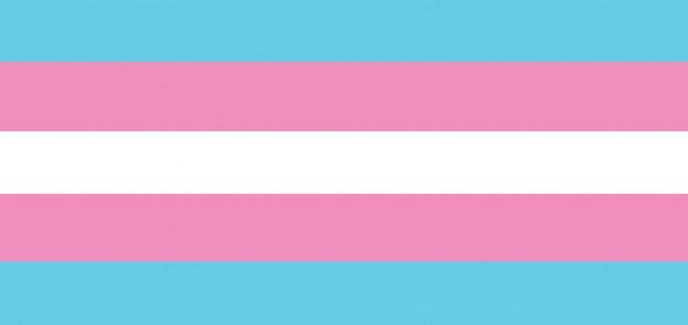 transgender flag for photo