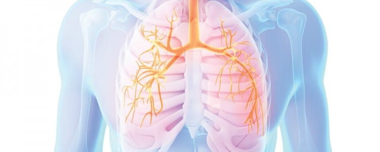 caring for patients in respiratory failure - american nurse today, Skeleton