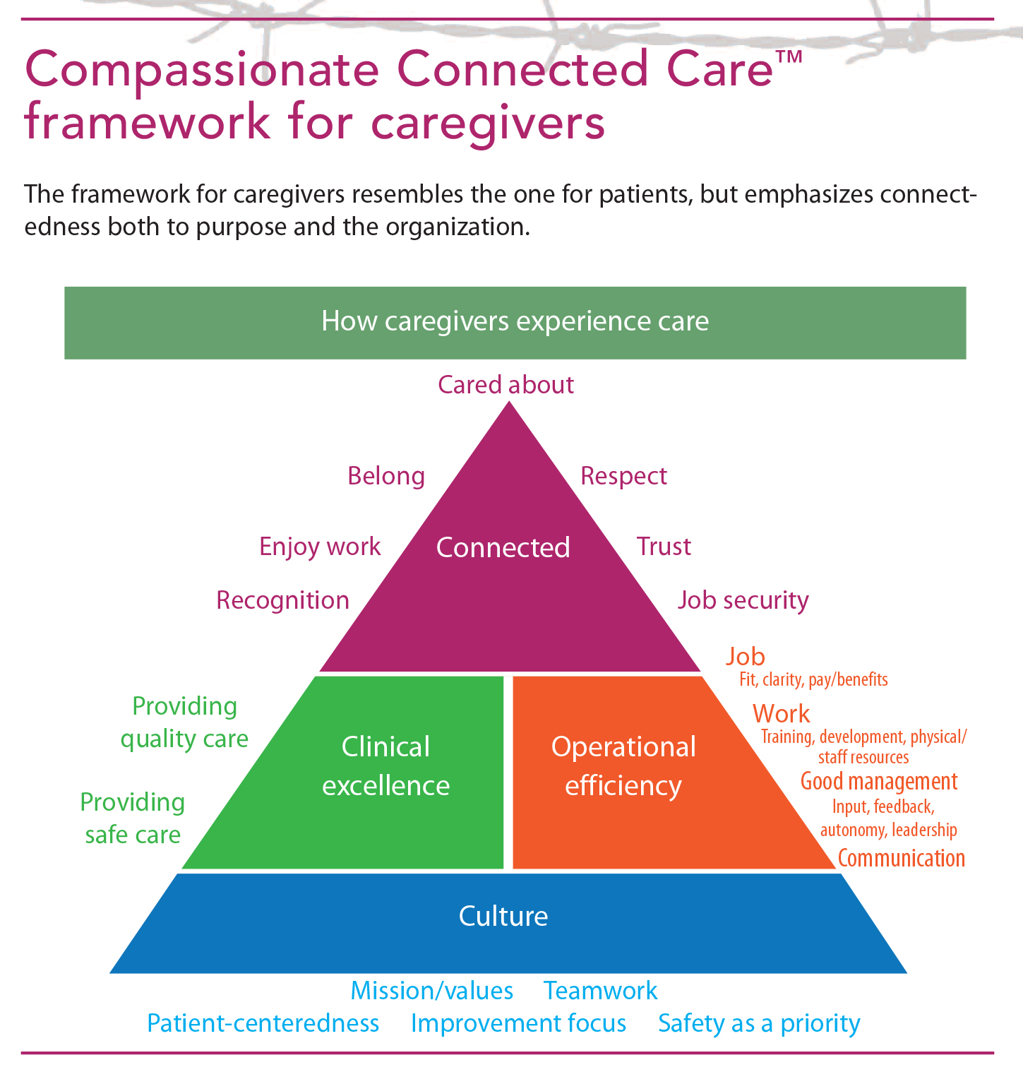 specifically measuring each of these components and comparing them to the average performance across all measures in the model provides a view of the data - Experience As A Caregiver