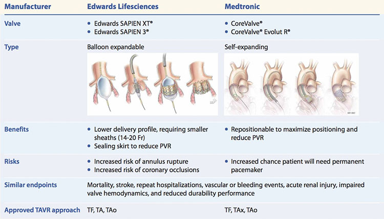 FDA-approved valves for TAVR