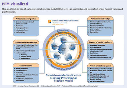 ppm visualized adapting professional practice model