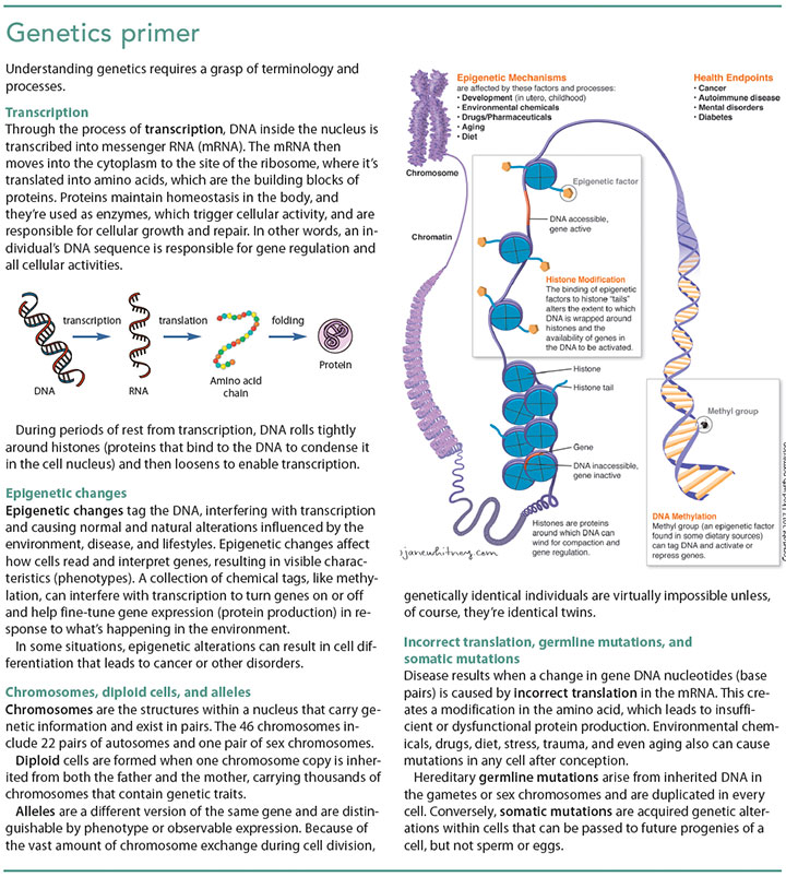 genetics clinical setting primer