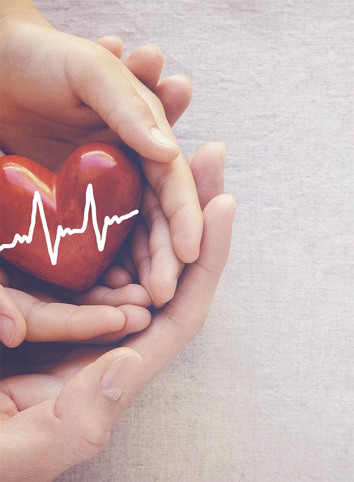 organ donation explore pediatric patient