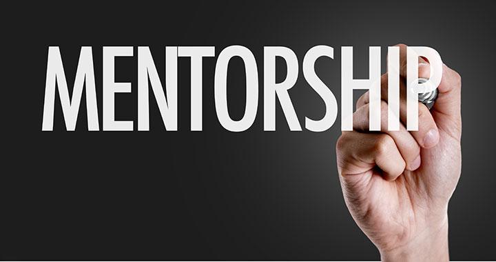 mentorship program novice nursing faculty ant