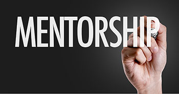 mentorship program novice nursing faculty