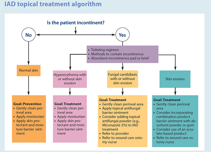 incontinence associated dermatitis management update iad topical treatment algorithm