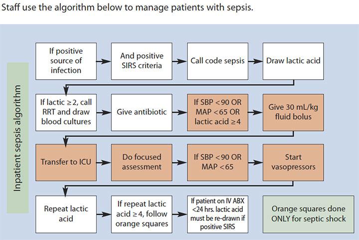 sepsis challenge develop process educate staff lead reduce mortality algorithm