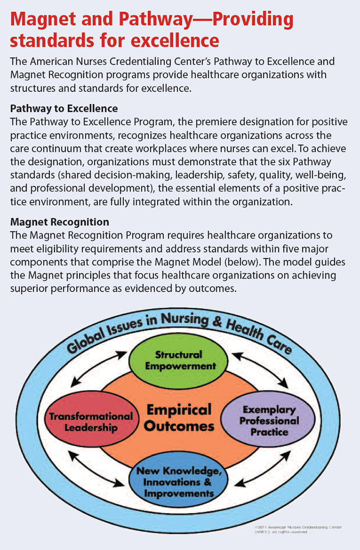 compare pathway excellence magnet recognition program standard