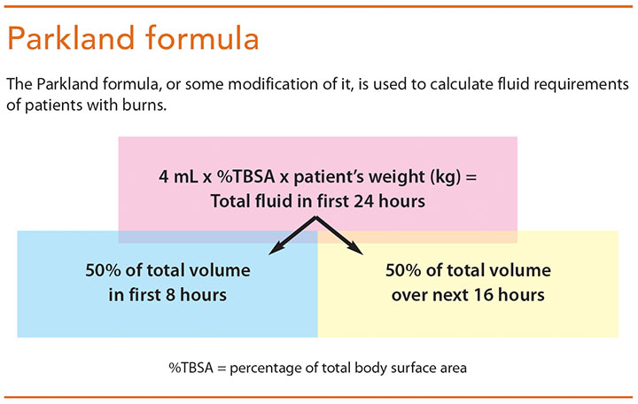 initial assessment mgmt burn patients parkland formula