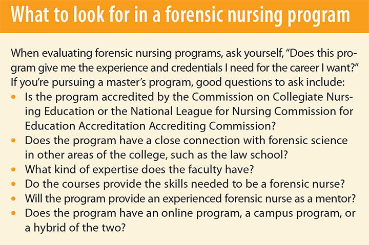 forensic nurses strides social justice program