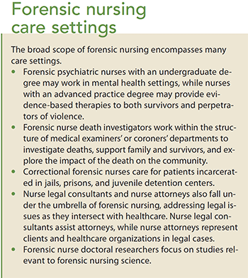 forensic nursing overview of a growing profession care
