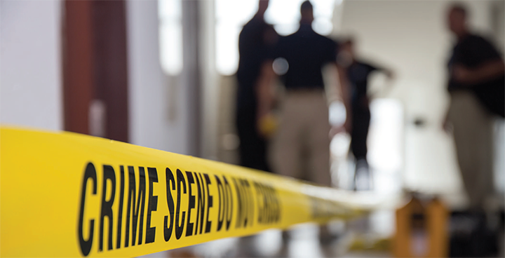 forensic nursing overview of a growing profession