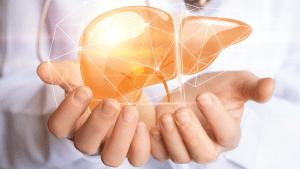 split liver transplants pediatric patients