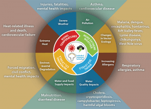 older citizens climate change imapct human health