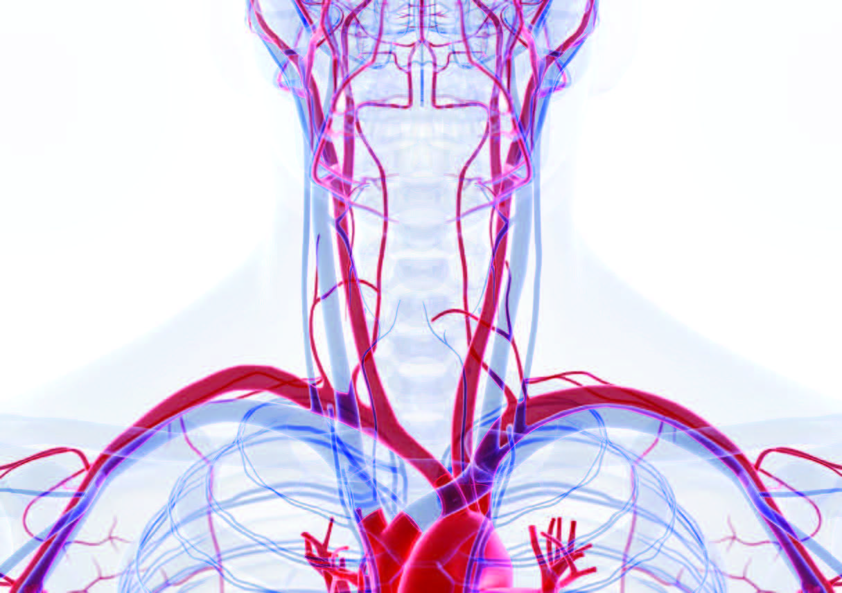 Strangulation A Silent But Deadly Form Of Intimate Partner